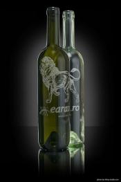 Gravura pe sticla Arad